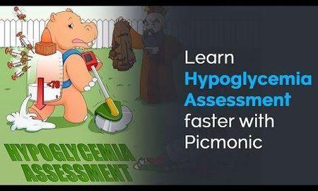 How Do You Assess For Somogyi Phenomenon?