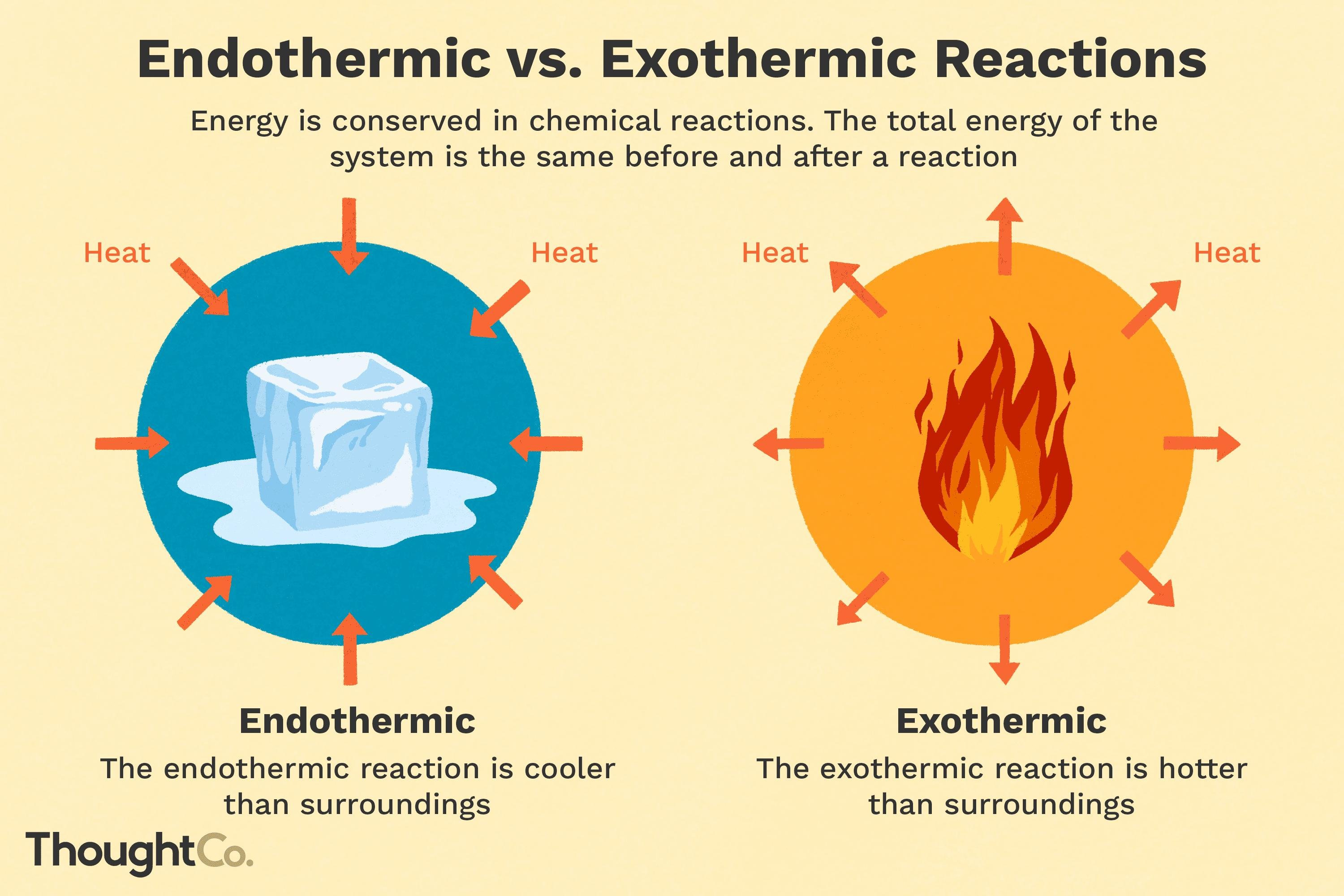 Endothermic And Exothermic Chemical Reactions