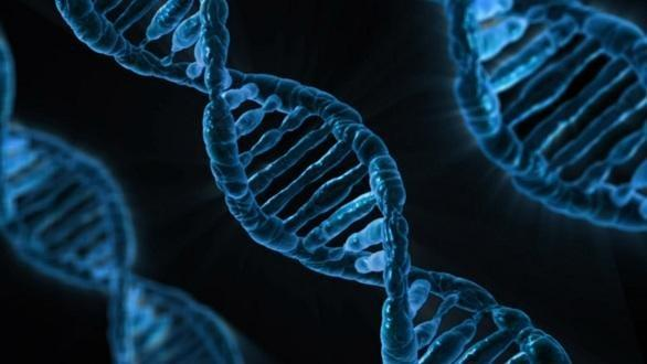 Is Diabetes Genetic? Facts & Risks of Diabetes Hereditary
