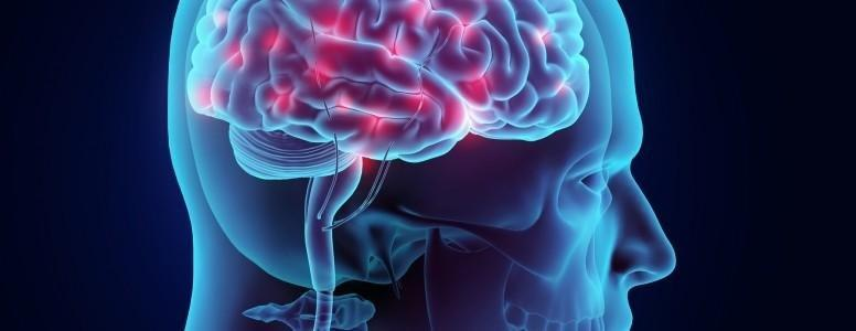 Study Identifies Brain Changes In Type 1 Diabetes