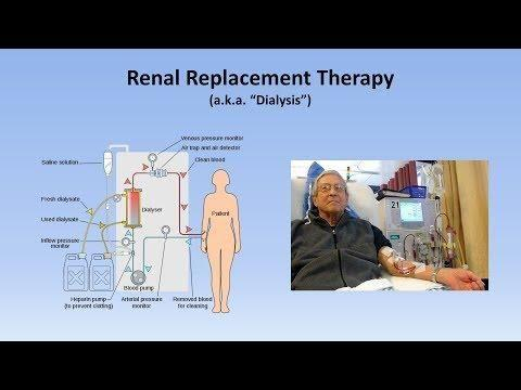 How Does Renal Failure Cause The Development Of Metabolic Acidosis?