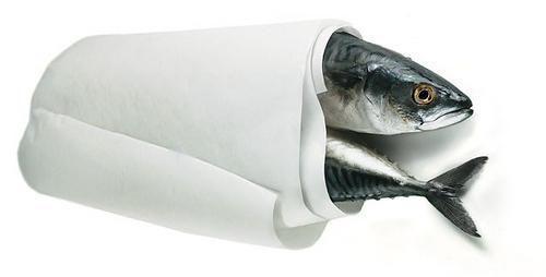Can Fish Get Diabetes