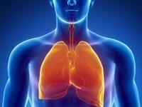 Respiratory System And Diabetes