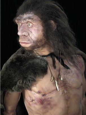 Diabetes risk gene 'from Neanderthals'