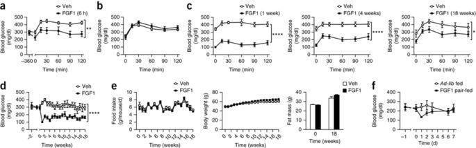 Fgf1 Protein Diabetes