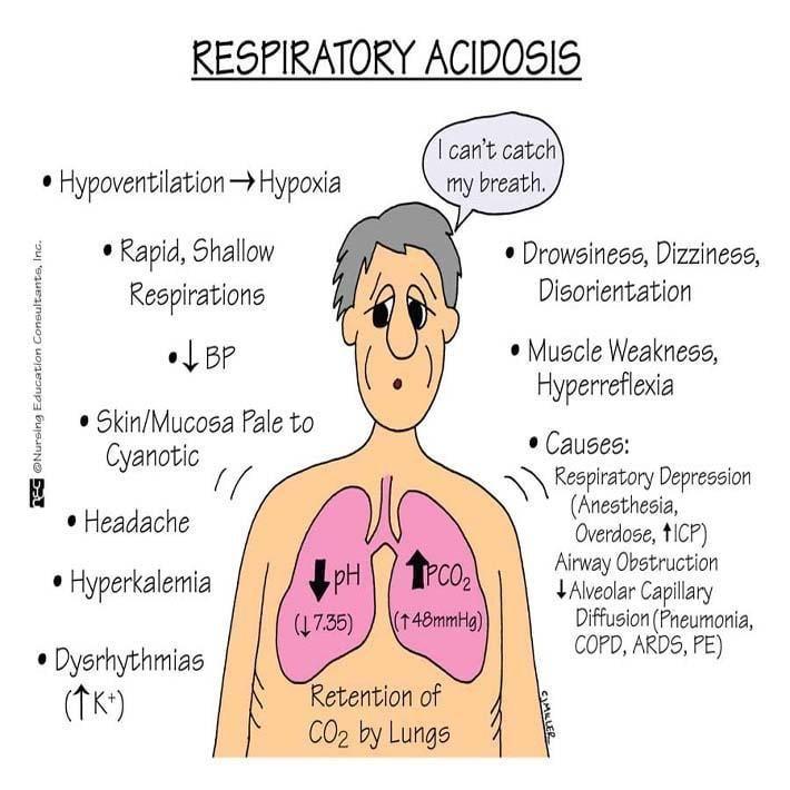 Acidosis And Alkalosis Pathophysiology