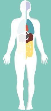When Is High Blood Sugar An Emergency