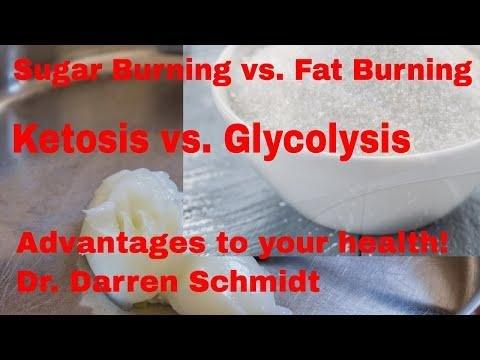 Is Ketosis Fat Burning?