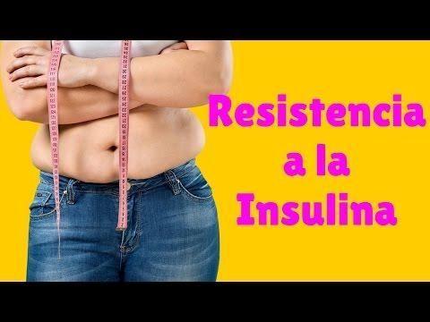 Funcin De La Insulina, Resistencia A La Insulina Y El Control De La Ingesta De Alimentos De La Secrecin