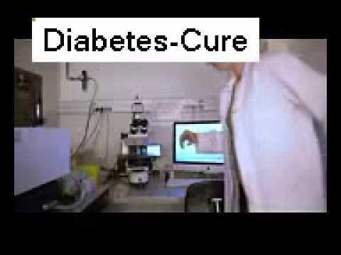 Type 2 Diabetes Bacteria