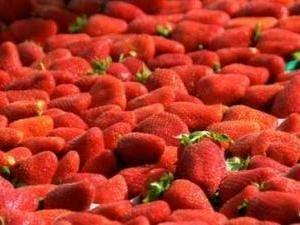 Eating strawberries can reduce diabetes risk