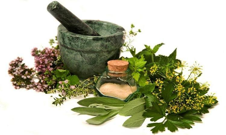 5 Herbs To Help Diabetes