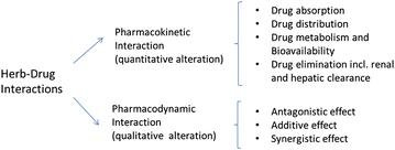Interactions Between Antidiabetic Drugs And Herbs: An Overview Of Mechanisms Of Action And Clinical Implications