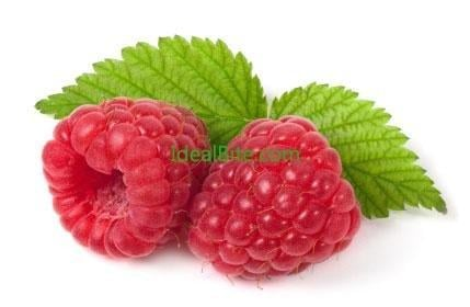 Raspberry Ketone Diet: Why Dr Oz Says To Check This Supplement Out