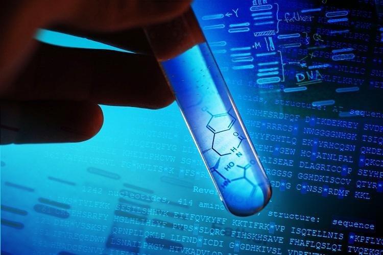 Long-Term Benefits of Linoleic Acid In Type 2 Diabetes