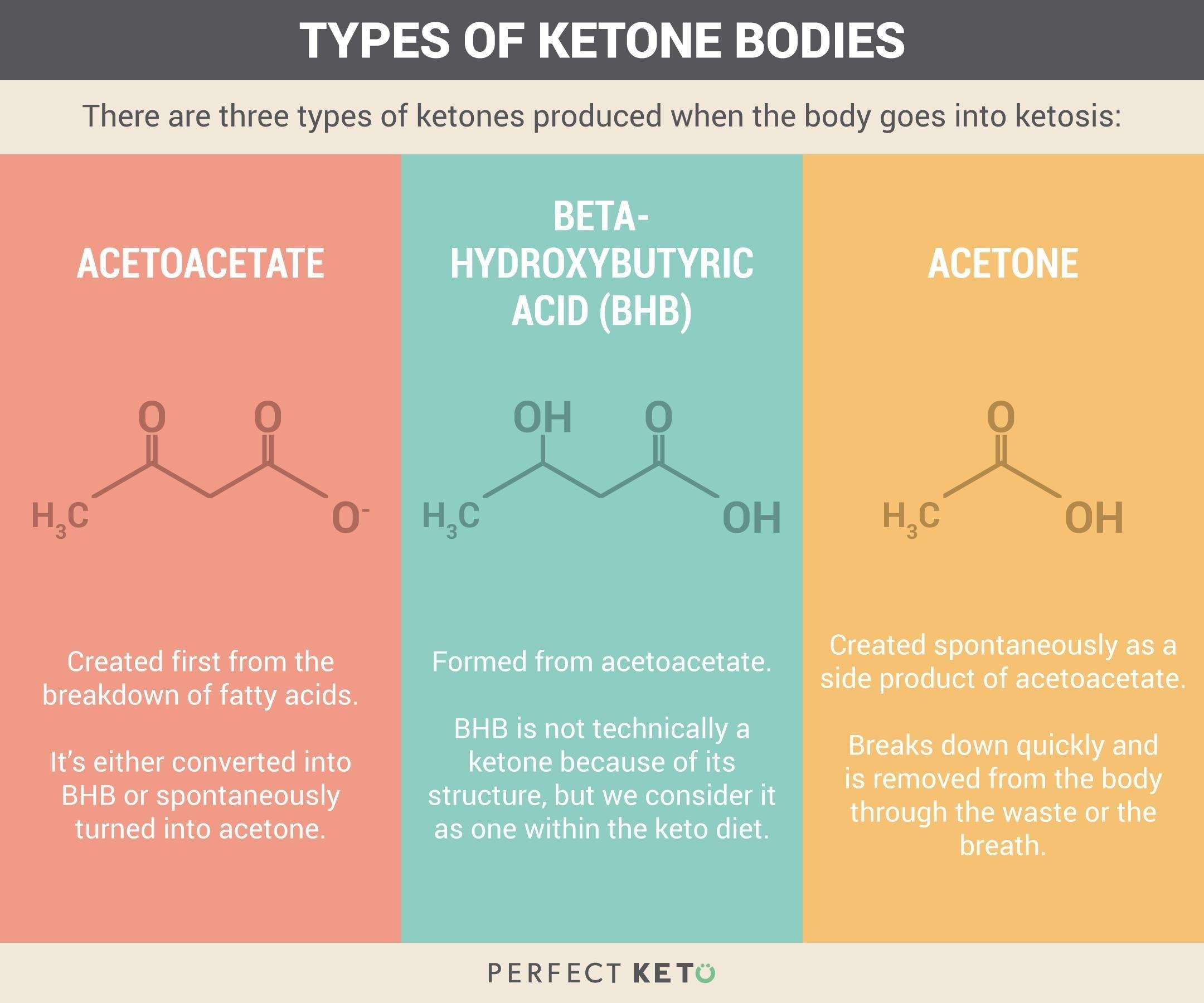 The Ultimate Guide To Ketosis
