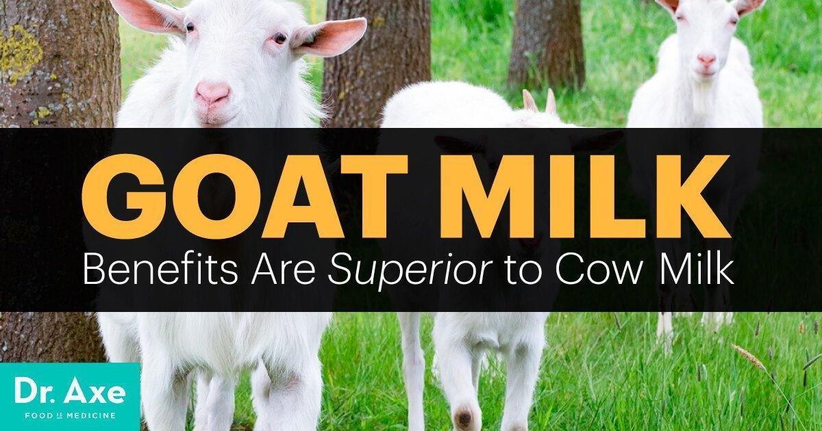 Goat Milk Benefits Are Superior To Cow Milk
