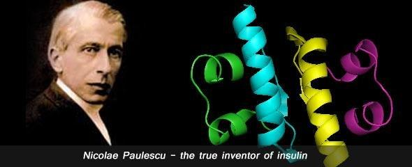 When Was Insulin Discovered And By Whom?
