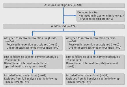 Liraglutide In People Treated For Type 2 Diabetes With Multiple Daily Insulin Injections: Randomised Clinical Trial (mdi Liraglutide Trial)