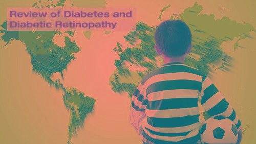 How Is The Circulatory System Affected By Diabetes?