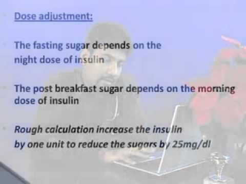 What Is In Insulin For Diabetes?