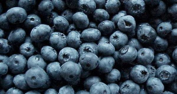 5 Reasons Why Blueberries Are A Superfood For Diabetics