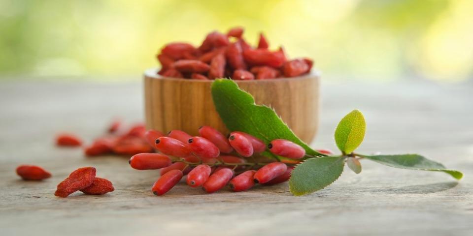 Goji Berries Aid Diabetic Weight Loss