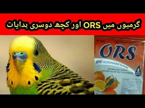Can A Diabetic Take Who Ors Solution In Diarrhoea & Dehydration? - Nutrition - Medhelp