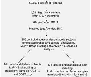 type 2 diabetes pathophysiology