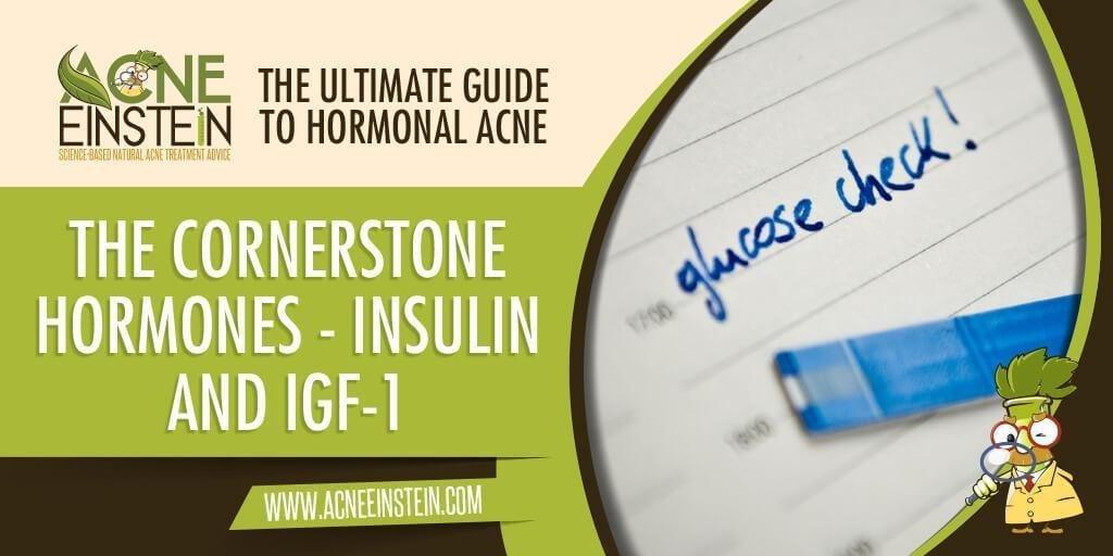 Cornerstone Hormones - Insulin And Igf-1