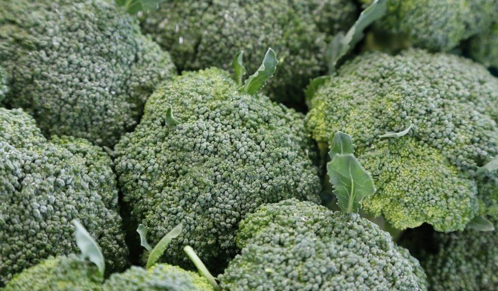 Broccoli Extract And Diabetes