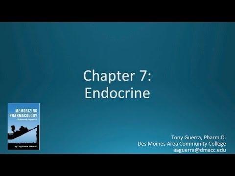 Usmle Endocrine Pharmacology