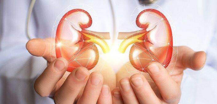 How To Protect Kidneys From Diabetes