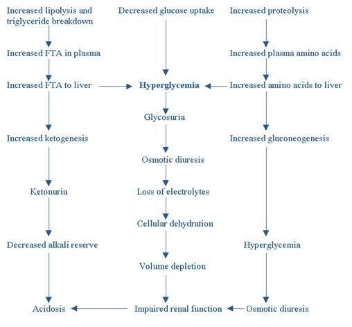 Case Study- Diabetic Ketoacidosis