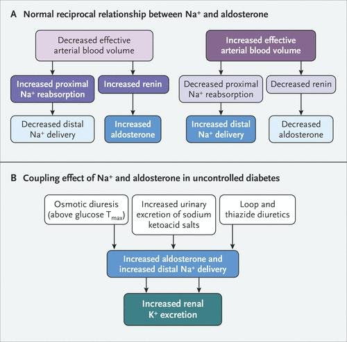 Electrolyte And Acid–base Disturbances In Patients With Diabetes Mellitus