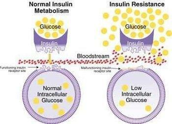 How To Cure Insulin Resistance With Herbs
