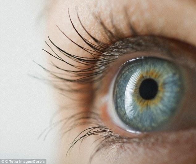 Can Diabetic Retinopathy Be Stopped?
