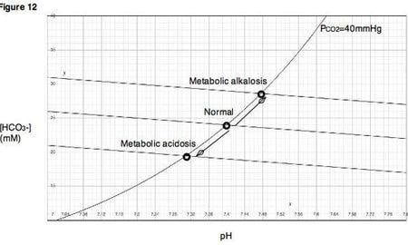 Metabolic Acidosis Pathophysiology
