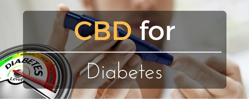 CBD for Diabetes – Treatment for Disease and Symptoms?
