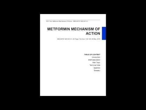 Metformin Mechanism Of Action Ppt
