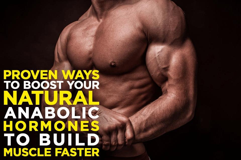 Ways To Boost Your Natural Anabolic Hormones To Build Muscle Faster