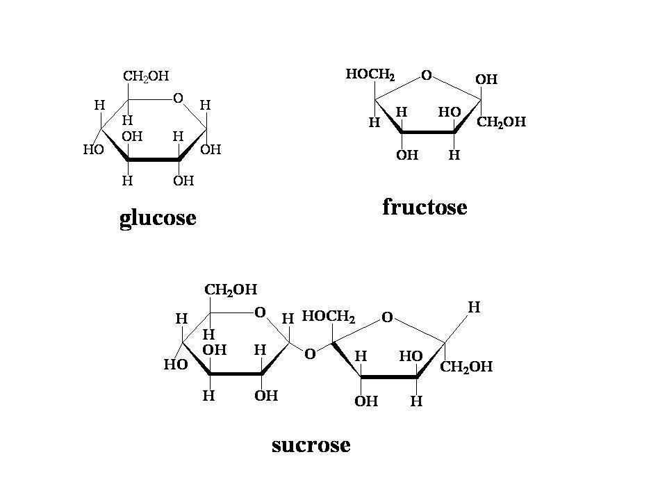 What Does A Glucose And Glucose Make?