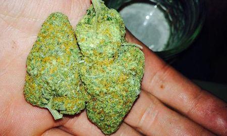 Study Reveals Marijuana Has Serious Health Benefits For Diabetes Sufferers