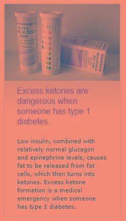 """""""ketones"""" From Diabetes Education Online"""