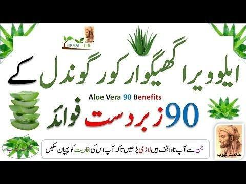 What Are The Benefits Of Aloe Vera For Diabetes?