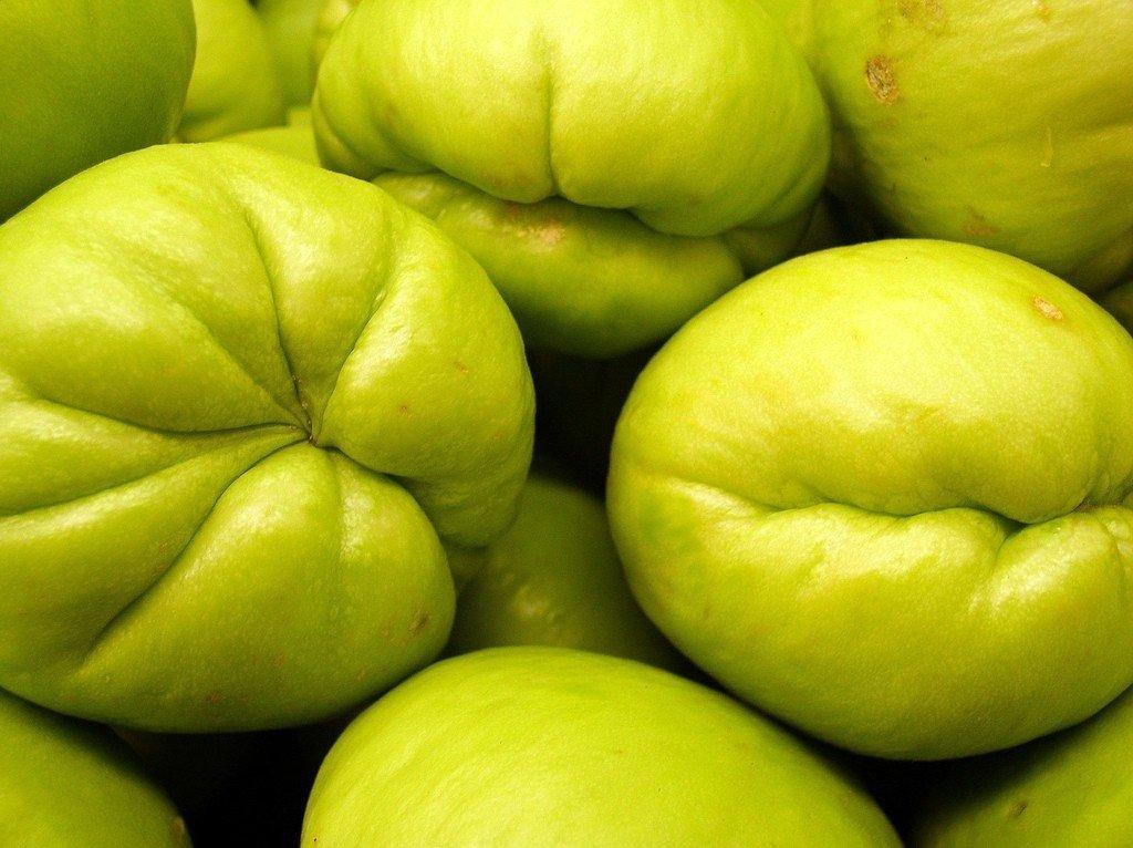 Eat The Chayote - The Awl