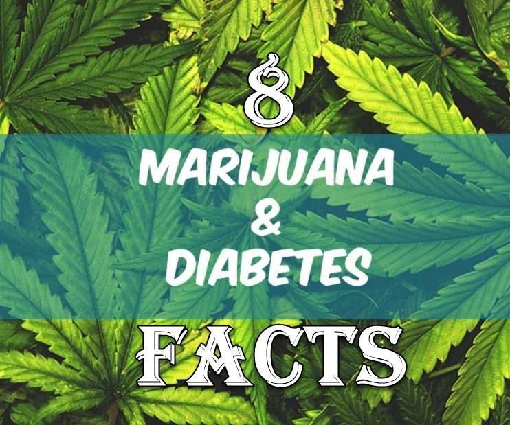 8 Facts About Cannabis and Diabetes