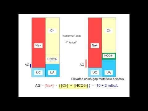 Metabolic Acidosis Anion Gap