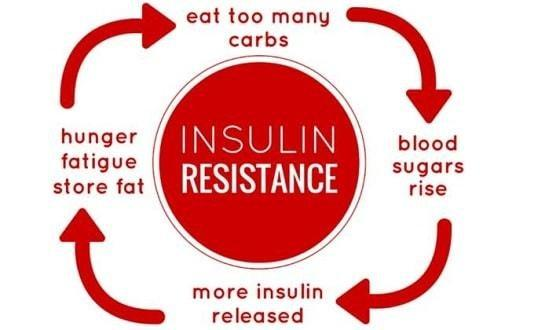 What is Insulin Resistance and How to Reverse It?