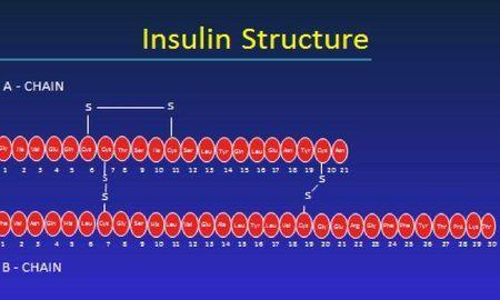 Insulin Analogs Classification